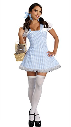 Dreamgirl Gingham Dress, Light Blue, Medium -
