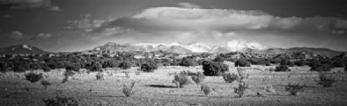 High desert plains landscape with snowcapped Sangre de Cristo Mountains in the background New Mexico USA Poster Print (36 x 12)