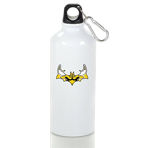 LINNA- 2 Unique Drinkware Aluminum Sports Water Bottle - Metallic Finish With Loop Cap For Outdoor And Sport Activities - 600ml (Christmas Baskets Houston)