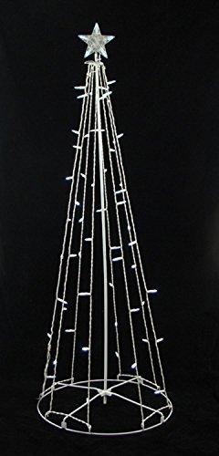 Cone Tree - 3