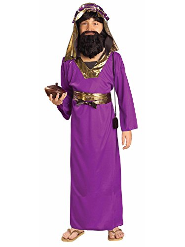 Forum Novelties Biblical Times Purple Wiseman Child Costume, Small