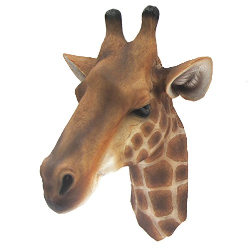 Amazon.com: 3D Life Size Wall Mount Giraffe Head Bust