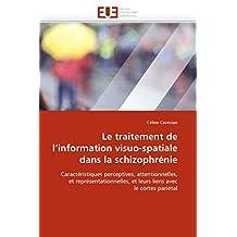 LE TRAITEMENT DE L  INFORMATION VISUO-SPATIAL