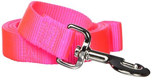 Hamilton Single Thick Nylon Dog Lead, 1-Inch by 4-Feet, Hot Pink