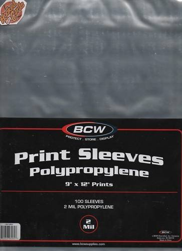 1 Pack (100) BCW 9 x 12 Print Photo Storage Sleeves Protection