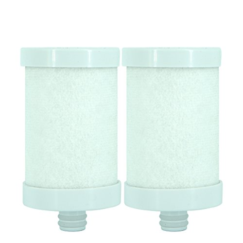 (Engdenton Stainless Steel Water Filter Cartridge Replacement, Kitchen Filtration(for Stainless Steel Filters ASIN: B07DCMD991) (2 Pack))
