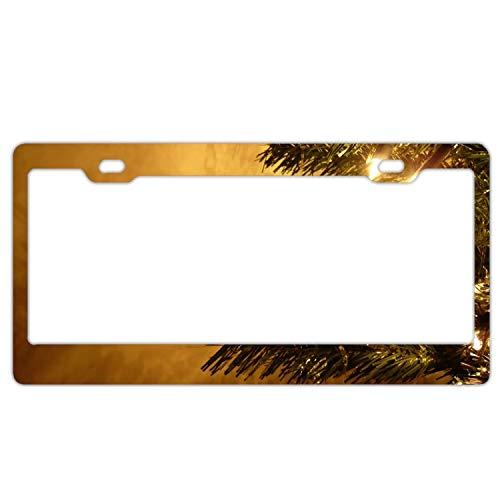 KSLIDS License Plate Holiday Christmas Ornaments Durable Car Tag 12