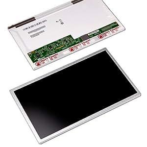 Pantalla LED (mate) 25.4 cm Toshiba Netbook NB200-113