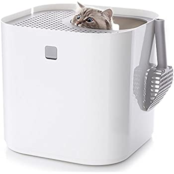 Amazoncom CatIdea Luxury Sifting Top Entry Cat Litter Box CL7
