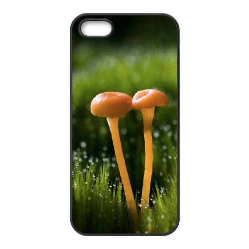 SYYCH Phone case Of Color Mushrooms Cover Case For iPhone 5,5S