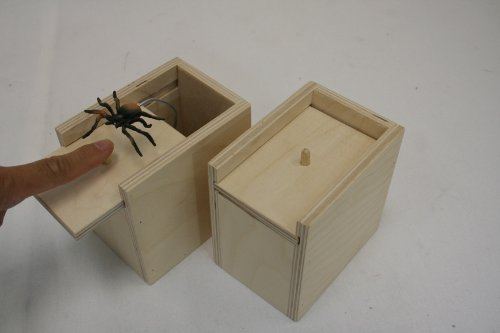 eHemco Amish Handcrafted Surprise Box with Spider - Unfinished -