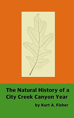The Natural History of a City Creek Canyon - City Utah Lake Creek City Salt