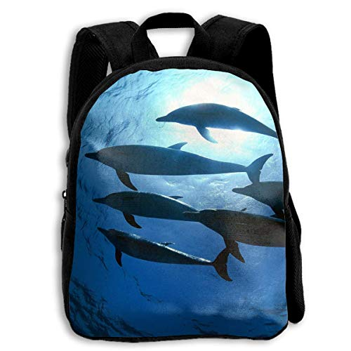 Briefcase Dolphin - Canvas Backpack Briefcase/Dolphins Oxford For Toodle Kids