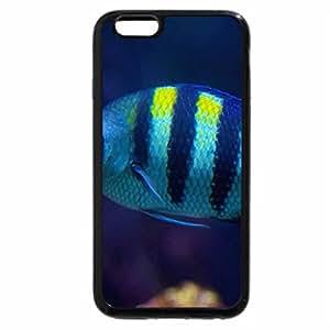 iPhone 6S Plus Case, iPhone 6 Plus Case, blue-striped fish