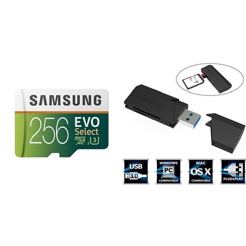 Best Mini SD Memory Cards