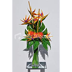 Silk Blooms Ltd Artificial Orange Bird of Paradise and Pincushion Protea Floral Arrangement 18