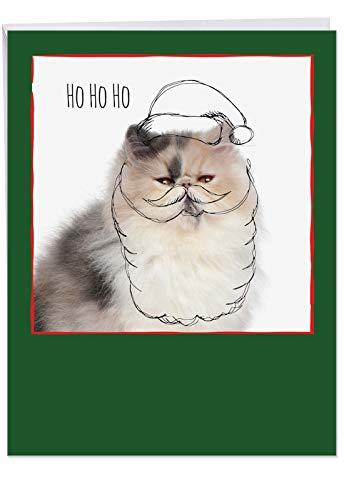 8.5 x 11 Inch 'Feline Graffiti Santa' Xmas Card with Envelope - Persian Cat with A Doodled Santa Hat and Beard Ready for The Christmas Season - Animal Holiday and Xmas Stationery J6583JXSB