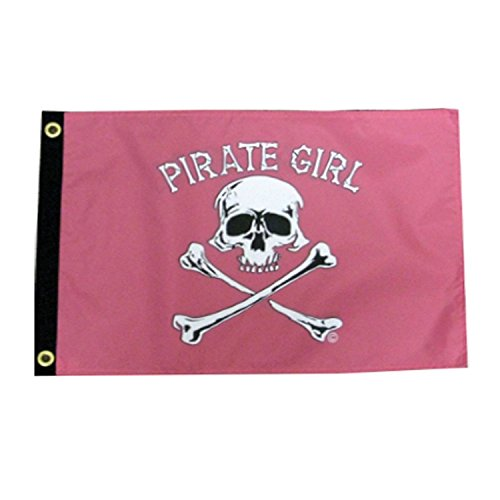 Pink Pirate Flag (Jons Imports 12 by 18-Inch Pirate Girl Pirate Flag)