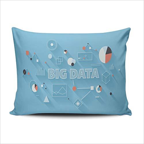MUKPU Pillow Covers Big Data Statistics Technology Large Database Throw Pillow Case Hidden Zipper Decorative Custom Pillow Cases One Side Printed Boudoir 12x16 Inches -