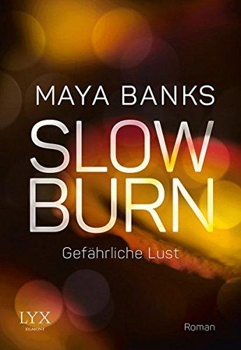 Slow Burn - Gefährliche Lust (Slow-Burn-Reihe, Band 3)