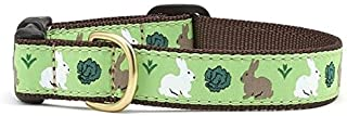 product image for Up Country Garden Rabbit Collar