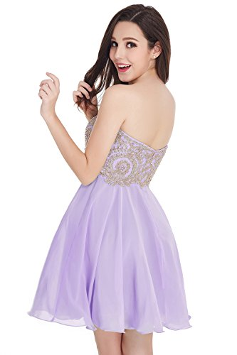 Babyonlinedress Womens Lace Tulle Applique Open Back Short Beaded Prom Dresses (Lavender,2)