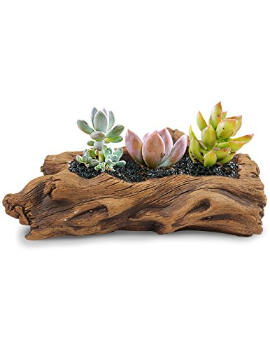 Faux Wood Log - Dahlia Driftwood Stump Log Concrete Planter/Succulent Pot/Plant Pot, 7.8L x 4.3W