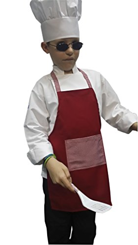 CHEFSKIN GINGHAM RED DELUXE APRON KIDS CHILDREN FITS 2-7 YR OLDS 15x21 INCHES REAL FABRIC 100% POLY GIFT PARTY...