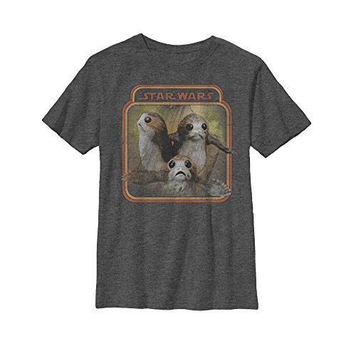 Fifth Sun Star Wars The Last Jedi Boys' Porgs Frame Charcoal Heather T-Shirt