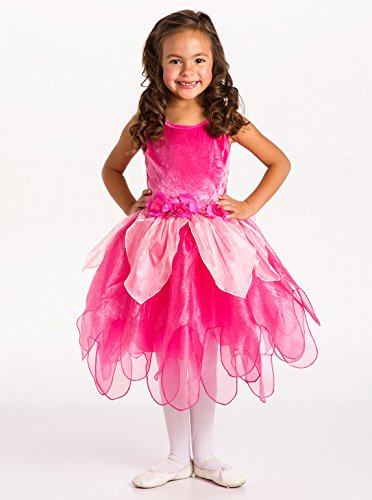 Little Adventures Hot Pink Tulip Fairy Girls Costume - Medium (3-5 Yrs) (Pink Dance Costume)