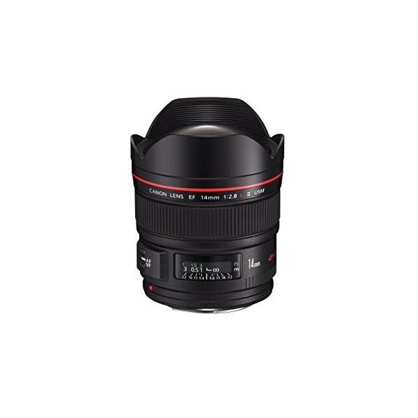 RetinaPix Canon EF 14mm F2.8 II 2045B003AA USM Prime Lens Wide Angle SLR Lens
