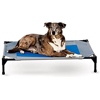 Amazon.com : Hugs Pet Products Cool Cot Elevated Dog Bed