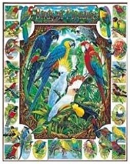 product image for Birds of Paradise Jigsaw Puzzle 1000pc