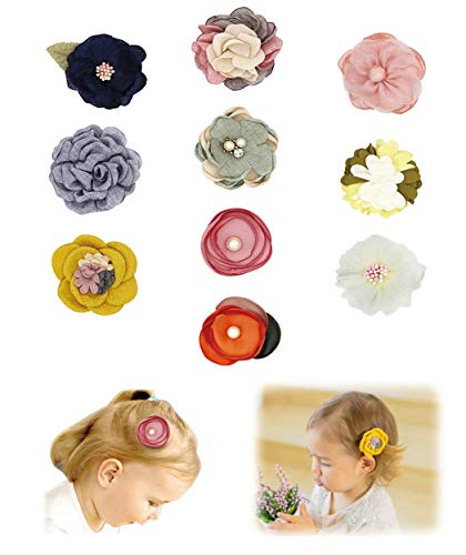 Baby Girls Hair Clips with Flowers Bows,Barrettes,Hair Accessories for Infant Toddler Girl Kids Teens by FANCY CLOUDS Pack of 10