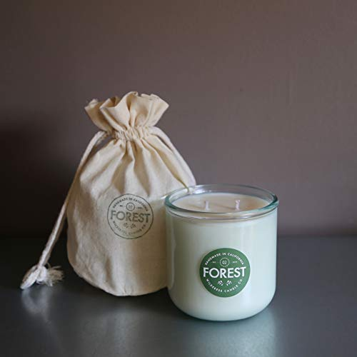 (FOREST Wildlands Collection Natural Soy Candle by Wilderess - cedar, fir, vetiver, rain, water, wood, woodsy, sequoia)