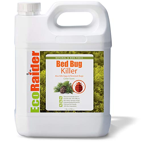EcoRaider Bed Bug Killer Spray, Green + Non-Toxic, 100% Kill + Extended Protection (1 Gallon)