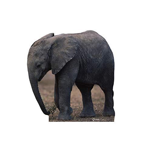 Advanced Graphics Elephant Life Size Cardboard Cutout -