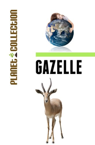 Gazelle: Picture Book (Educational Children's Books Collection) - Level 2 (Planet Collection - Gazelle Of Picture A A