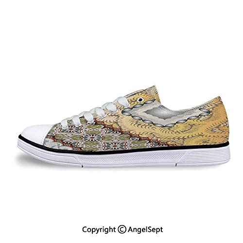 Unisex Canvas Shoes Psychedelic Concentric Flowing Spirals Themed Low-Top Sneak