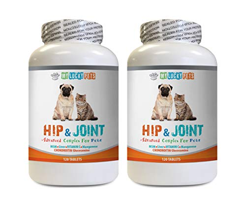 dog joint relief treats - PET HIP AND JOINT COMPLEX - DOGS AND CATS - NATURAL VET APPROVED FORMULA - IMMUNE BOOST - GOOD FOR STIFF JOINTS - excel glucosamine for dogs - 2 Bottles (240 Tabs)