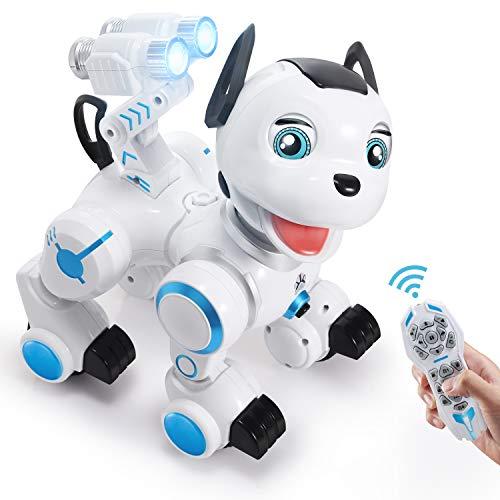 Toch RC Robot Dog