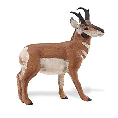 Safari S284729 Wild North American Wildlife Pronghorn Buck Miniature: Toys & Games