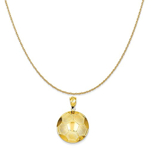 14k Yellow Gold Soccer Ball Pendant on a 14K Yellow Gold Rope Chain Necklace, 16