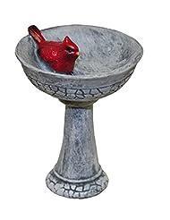 G & F MiniGardenn 10027 Fairy Garden Miniature, Cardinal Bird...