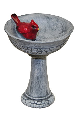 MiniGardenn 10027 Fairy Garden Miniature, Cardinal Birdbath Pick (Hand Painted Resin Glove)