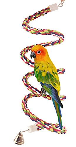 Petsvv 0.6-Inch by 63-Inch Rope Bungee Bird - Parrot Senegal
