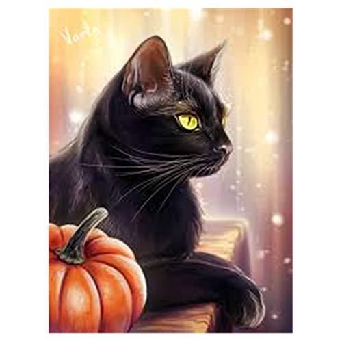 Aphila Diamond Painting Kits for Adults Round Drills Full Resin Rhinestones Embroidery Cross Stitch Decor Gift Black Cat Pumpkin 30x40cm/12