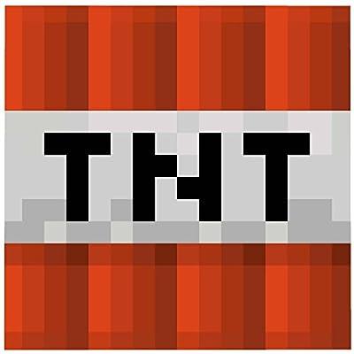 MInecraft Mojang TNT Explosive Block Graphic Super Plush Fleece Blanket Throw