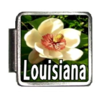 (Louisiana State Flower Magnolia Photo Italian Charm Bracelet Link)