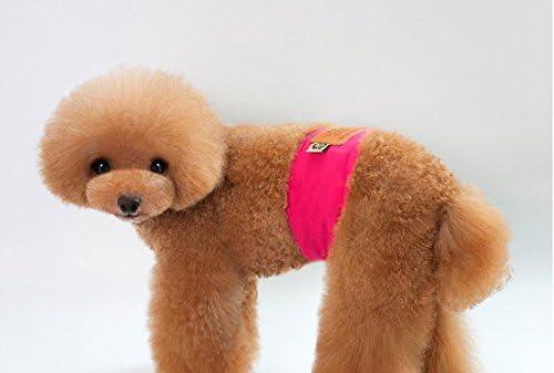 Vivi Bear - Pañal diseñado específicamente para perros macho ...
